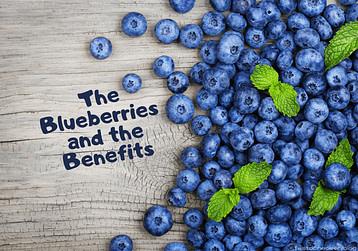 Blog Post main banner displaying Blueberries