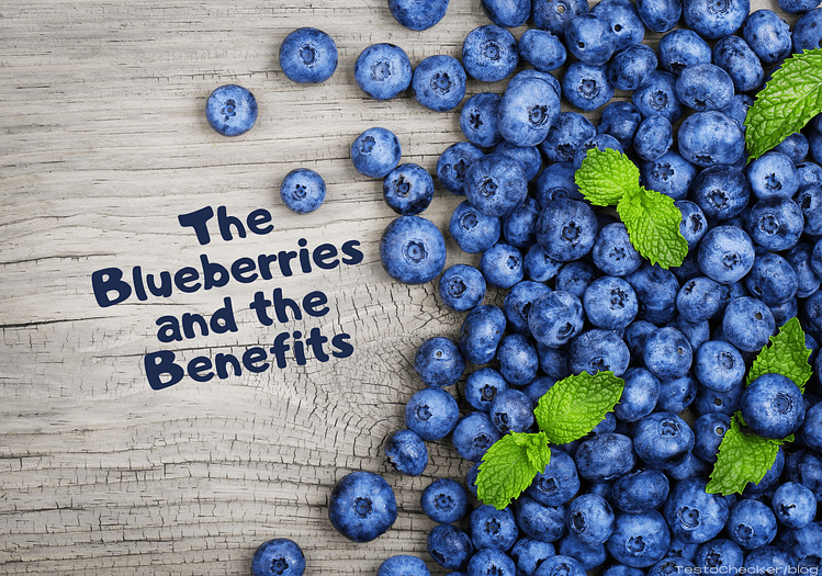Blog Post main banner displaying Blueberries
